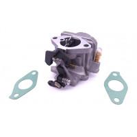 5041107 / 5040959 Carburetor Johnson Evinrude 4 and 6HP 4-Stroke