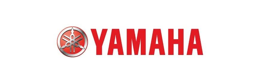 Yamaha Trim Motor
